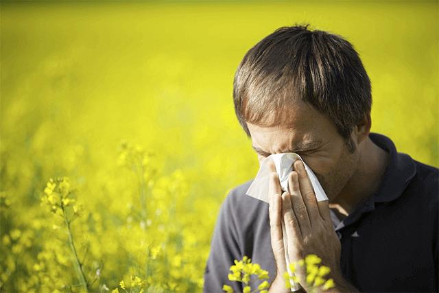 Summer Allergy tips